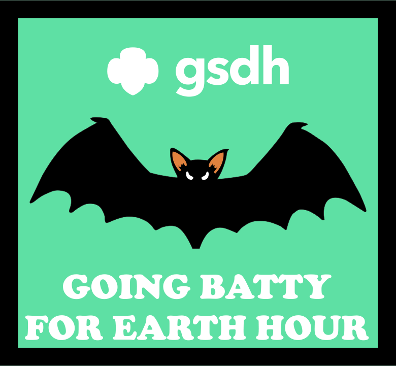 Earth Hour Patch